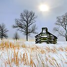 VALLEY FORGE by MIKESANDY