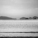 Misty coast by Anthony Thomas