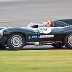 Jaguar D Type by Willie Jackson