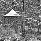 Gazebo with new snow (black and white version) by RGHunt