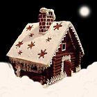 Winter tale by Bluesrose