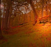 MY DREAM PLACE IN THE WOODS by leonie7