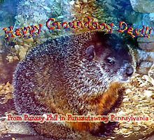 Happy Ground Hog Day to all! by vigor
