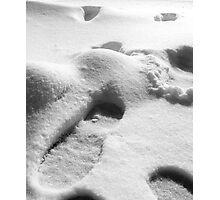 02-01-11  SNOW DAY!  SNOW DAY! Photographic Print