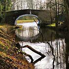 Leeds & Liverpool Canal At East Marton..... by Sandra Cockayne