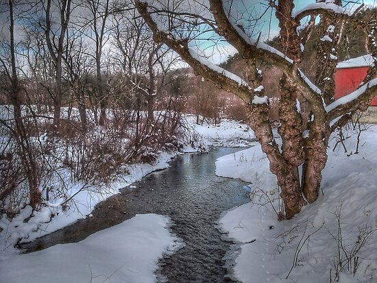 Winter's Landscape by vigor
