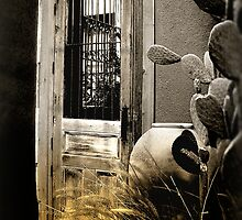 Tucson Door by Lucinda Walter