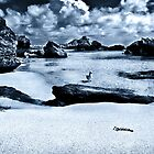 """Low Tide"" by Heather Thorning"