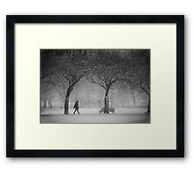 Caught in the snowstorm Framed Print