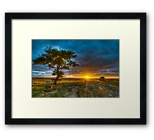 Dog Rocks At Sundown Framed Print