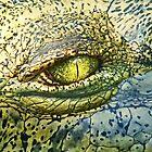 Crocodile by Lance Leopold