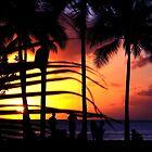 Sunset Through the Palms by Josh Kennedy