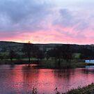 Sunrise At The Fish Farm by Sandra Cockayne