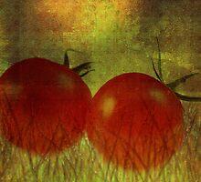 Tomatos by RosiLorz