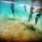 Hidden View~Beneath Bondi, Young Love by Annette Blattman