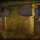 Stable Mates by Catherine Hamilton-Veal  ©