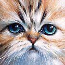 Red Chinchilla kitten by Elena Kolotusha