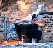 Winter in die kraal by Rina Greeff
