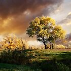 Evening fairy tale by fenist