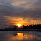 Winter Solstice by Lisa Cook