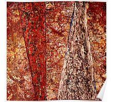 """The Divide"" - Old Paint, Varnish, Ink - Panels - 2011 Poster"