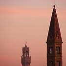 Pink Skies In Florence by minikin