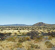 Namibian landscape by Matt Eagles