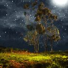 Starfield by RC deWinter