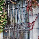 Old Mausoleum Door by Sheri Nye
