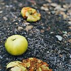 Crushed Apples by TrishaSwindell