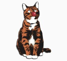 Red Nose Cat in aid of Comic Relief by Brian Edwards