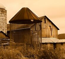 """"""" Empty Bird Cage """" sepia # 3 by canonman99"""