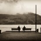 Divided Views - Akaroa Harbour NZ by ChrisMcKay