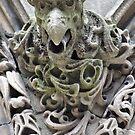 Real Gargoyle by Jeanie93