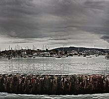 Rosny Waterfront HDR Panorama by thefallenone
