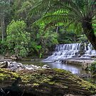 Upper Liffey Falls by mspfoto
