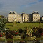 Jardin and Palais de Luxembourg, Paris by BronReid