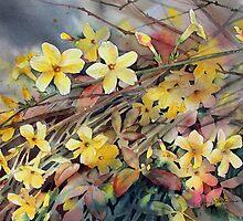 Winter Jasmine by Ann Mortimer