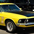 Mustang Boss II by Jeanie93