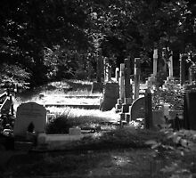 Highgate Cemetery by Paul  Green
