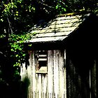 Outhouse by Sharon Woerner