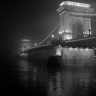 Lánchíd, Budapest by Rodney Johnson