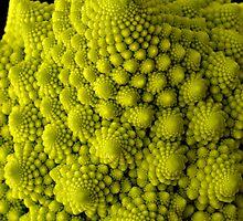 cauliflower by jomtien