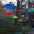 Umbrellas at dusk by 3Cavaliers