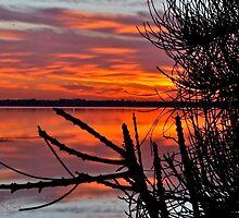 Downunder Sunrise. by Warren  Patten