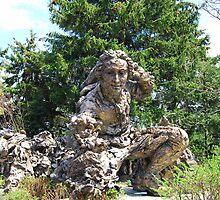 Carl Linnaeus Statue - Chicago Botanic Garden by KevinsView