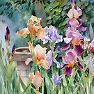 Bird bath and Irises by Ann Mortimer