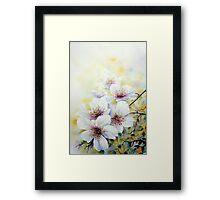A spring bloom Ballet ! Framed Print