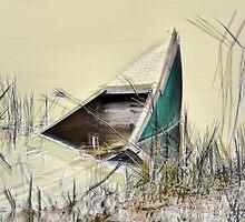 Sunken Canoe by Jeff Ore