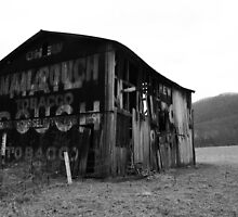 Mail Pouch Barn by searchlight